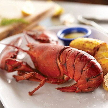 dine home delivery naples fl red lobster delivery by. Black Bedroom Furniture Sets. Home Design Ideas